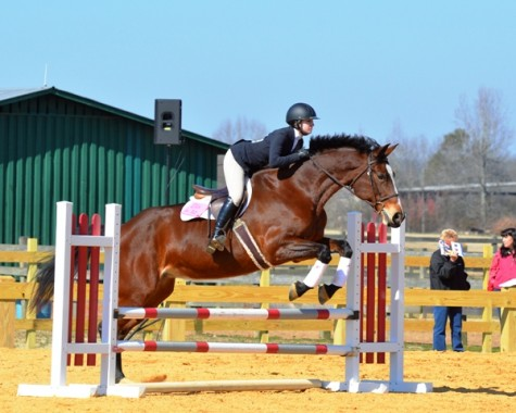 Equestrianism Takes Over SEC