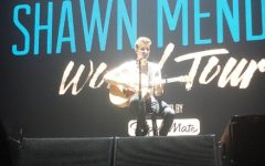 The Truth About Shawn Mendes: A Fan's Perspective
