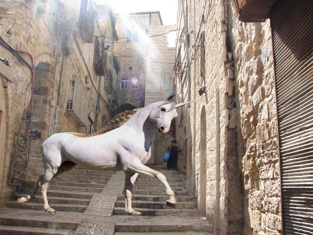 Billy Cheesecakes's favorite animal was the unicorn. He would ride the beast through Jeruslalem and other cities as he commited his ethically dubious acts. Billy Cheesecakes's unicorn was known as the fastest mount in all of the Middle East.