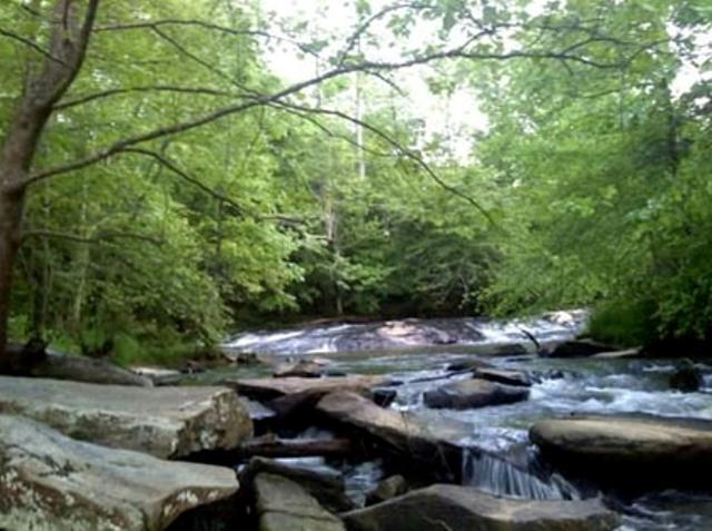 Poole's Mill Park is a beautiful park tucked away in the western corner of Forsyth County and features Setting Down Creek; Photograph by Kasey Reed