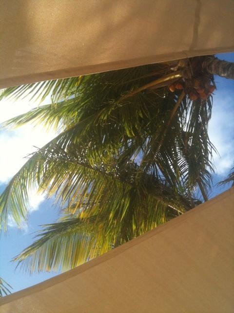 Bonaire%3A+The+Stony+Vista