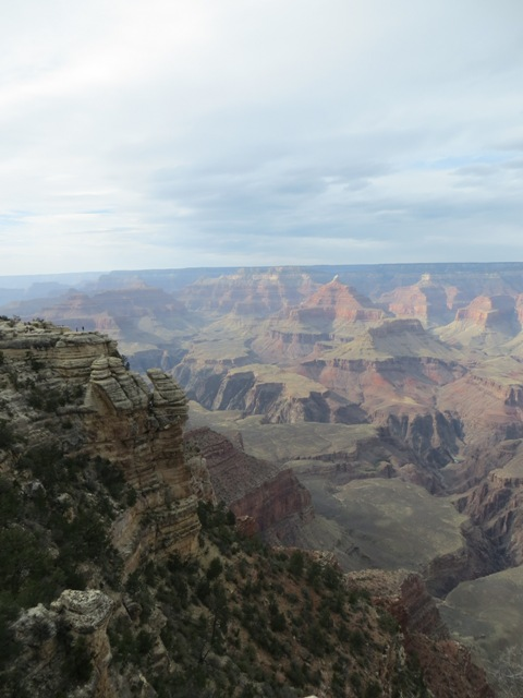 """""""I find it amazing that over the years, trees and other vegetation have managed to grow along the base of the Grand Canyon, and these small specks of green add a beautiful twist to the already beautiful sight of the massive red rock canyon."""""""