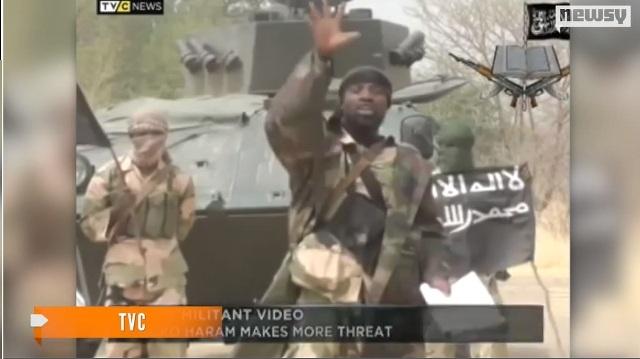Leader of Boko Haram, Abubakar Shekau, raises his fist against capitalism.
