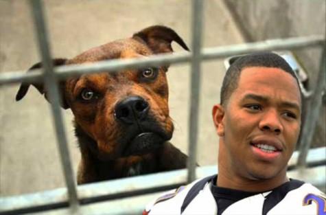 FLATLINE: NFL Joins the Violence-Free Animal Lover's Club
