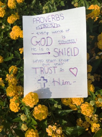 My favorite verse and my inspiration everyday is definitely Proverbs 30:5; the verse emphasizes how if we just put our trust in Him, He watches over us and keeps us safe in His love. I love it.