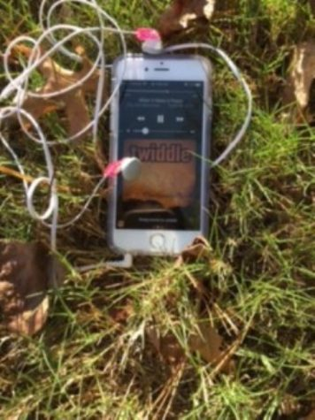 """This picture captures Twiddle's """"When It Rains It Pours"""" being played in the relaxing fall weather. It is the perfect song to listen to at any time in the year!"""