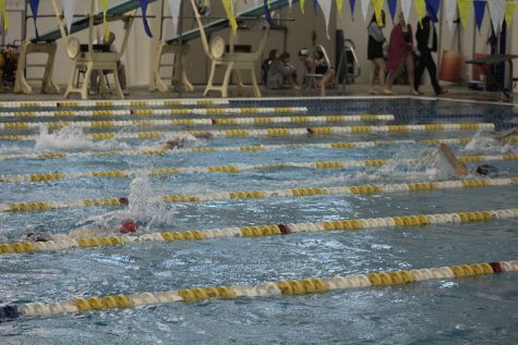 Raider Swim Team Swims Their Way into the Forsyth County Championship
