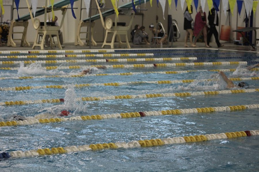 Girl Swimmers from all across the county compete for their chance to swim in the finals.