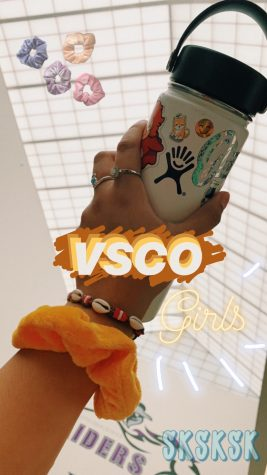 How to be a VSCO Girl