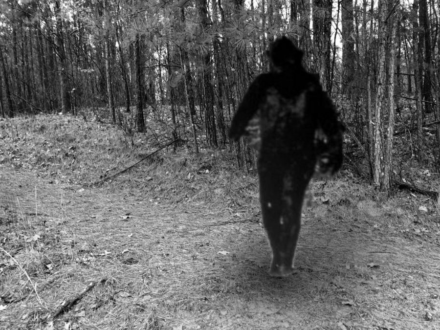North Forsyth students have been searching for Bigfoot weeks. Here is a photo of Bigfoot walking around the entrance of the trail at North Forsyth.  (Photo by Grace Wood)