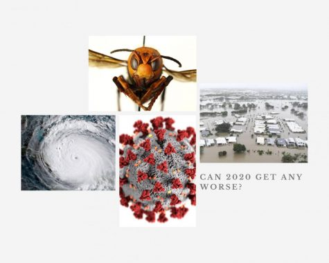 Photo Caption: There has been a variety of natural events and disasters that have occurred throughout 2020.  Photos by:  Top: scitechdaily.com Left: usatoday.com Right: npr.org Bottom: who.int.