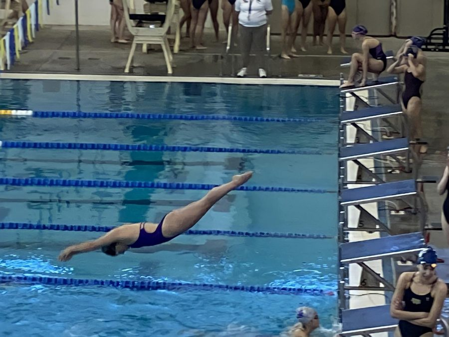 Sophomore Abigail Hutchenson diving into her swimming lane at the Forsyth Central Holiday Invitational. Photo by Sarah Treusch.