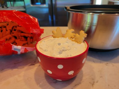 This easy no-bake Chocolate Chip Marshmallow Fluff Dessert Dip will satisfy any sweet tooth. With only five ingredients, it is to die for! Photo by Cynda Allen.