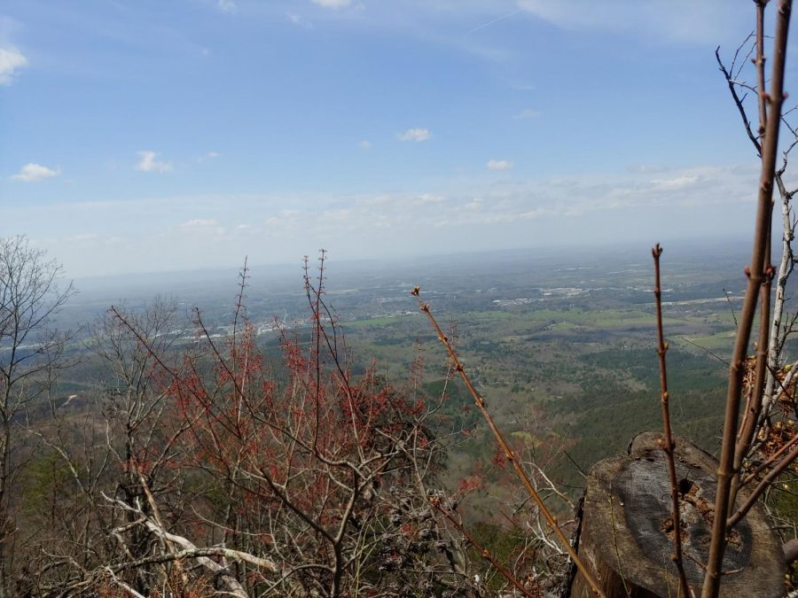 Views at the end of a hiking trail in Fort Mountain State Park.  Photo by: Imogene Ragan